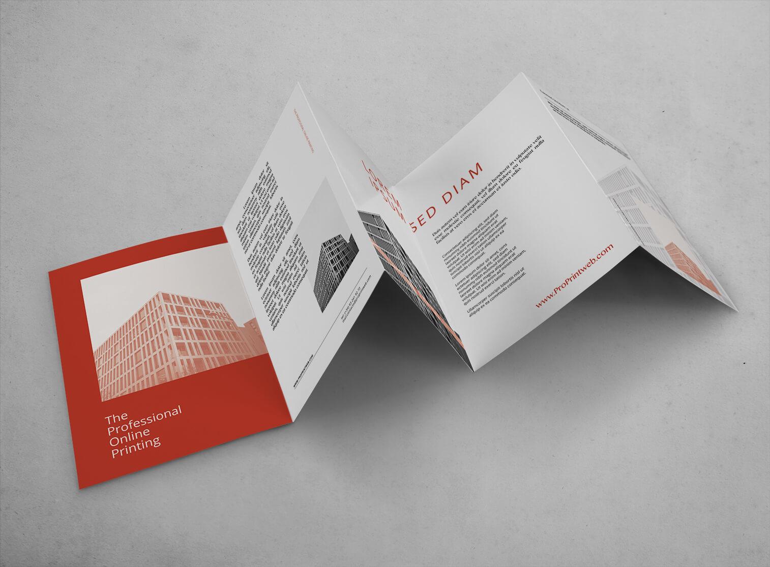 folleto cinco cuerpos acordeon abierto proprintweb