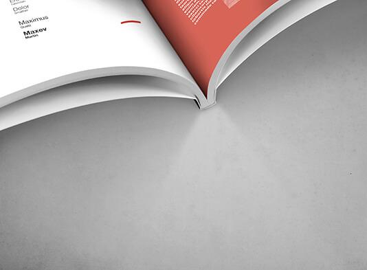 detalle revista encolada proprintweb