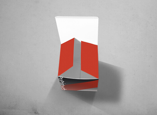 Imprimir Cubo Automontable Cuadrado en papel 220x220 mm - Abierto