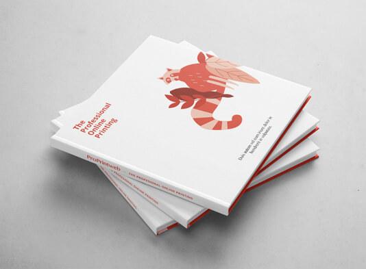 Imprimir cuento infantil con tapa dura cerrado - ProPrintweb