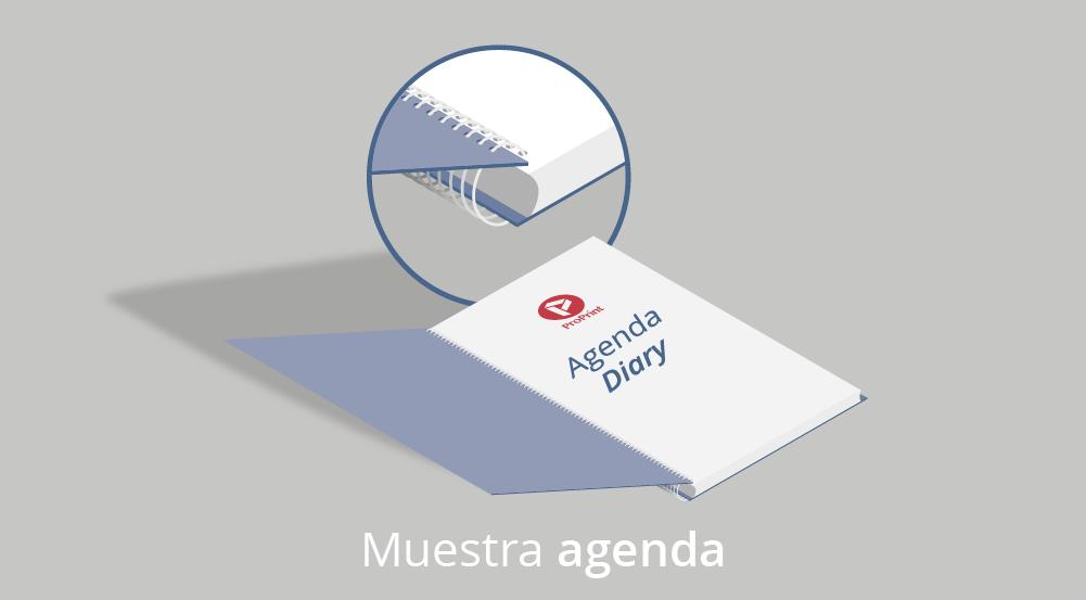 Agendas mini gris