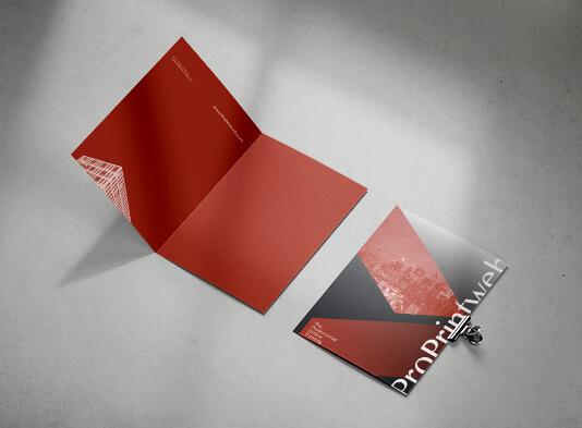 Impresión de carpeta expediente díptica - ProPrintweb