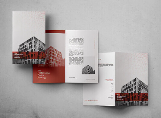 Imprimir Diptico express - ProPrintweb