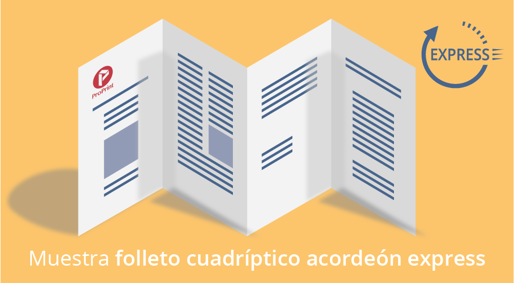 folleto cuadriptico 24 ok3 01