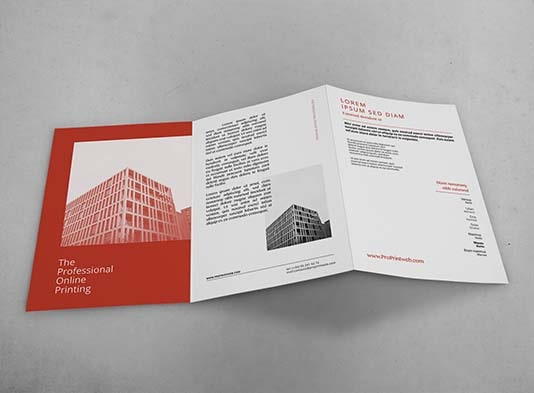 Imprimir tríptico envío rápido - ProPrintweb