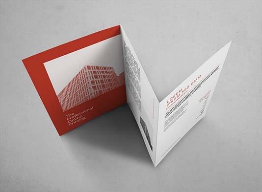 Imprimir Triptico-urgente _ ProPrintweb