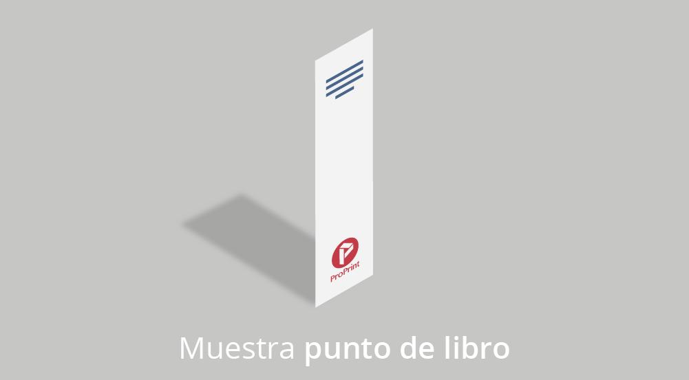 punto libro 04