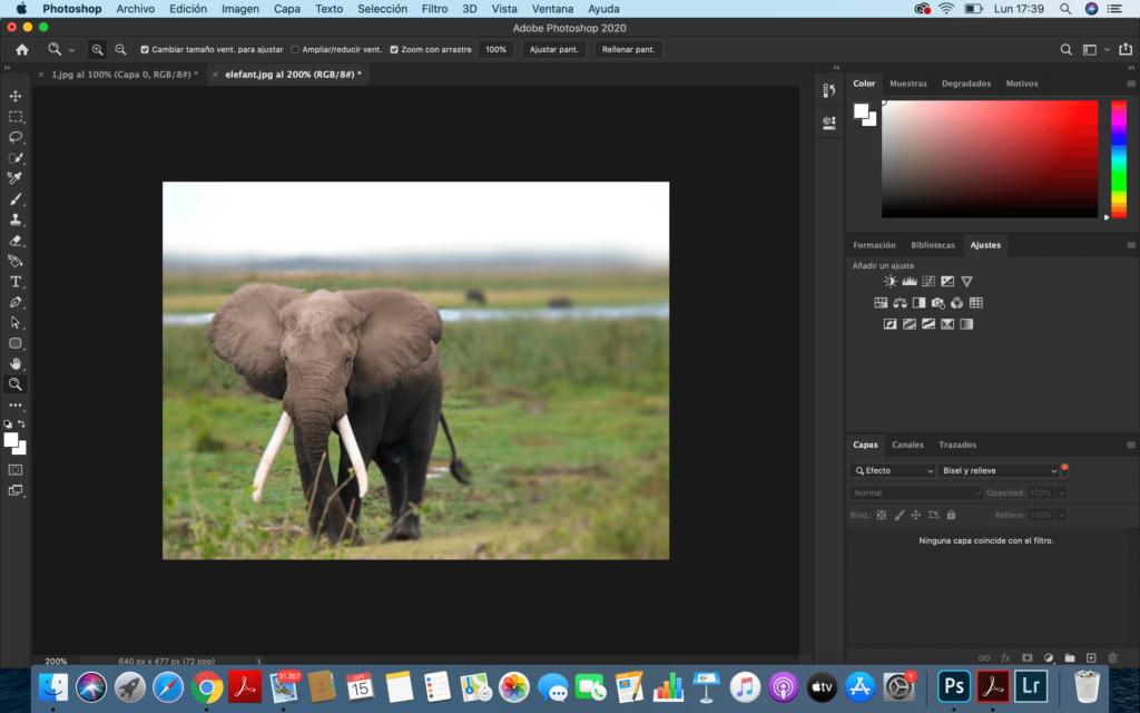 Desenfocar el fondo en Photoshop - paso ultimo articulo ProPrintweb