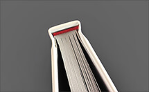 cabezada_RED_libro - ProPrintweb